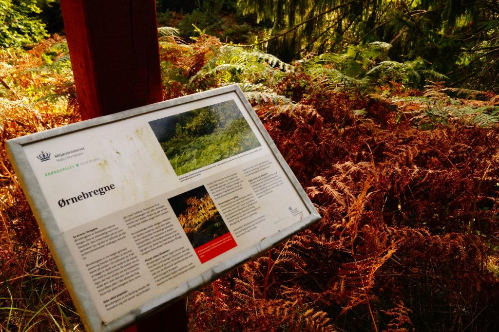 Infoskilt i Søheden Skov