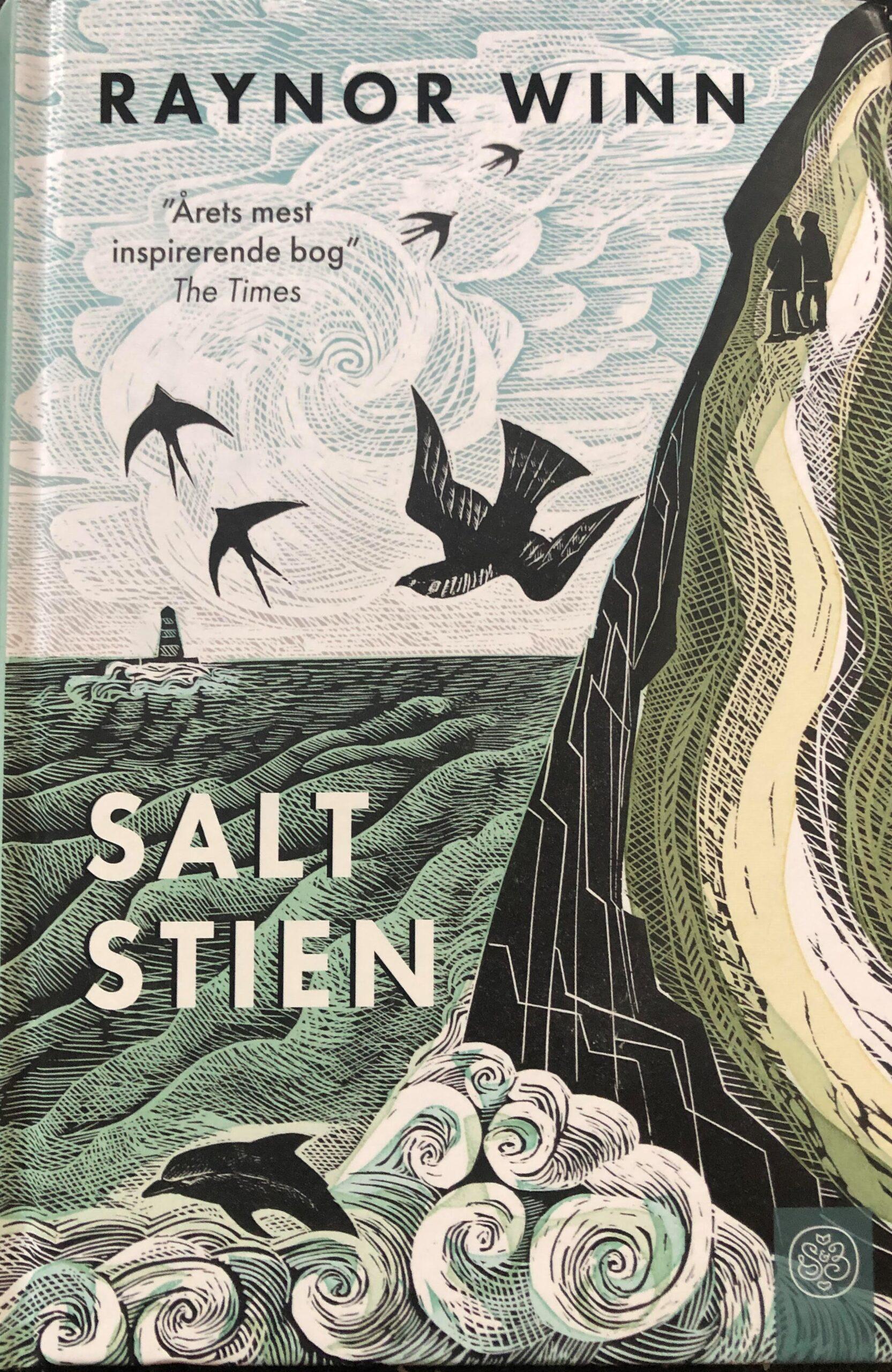 Saltstien - billede af bogen